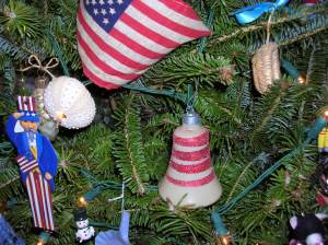 Caring For A Living Christmas Tree For Now And The Future